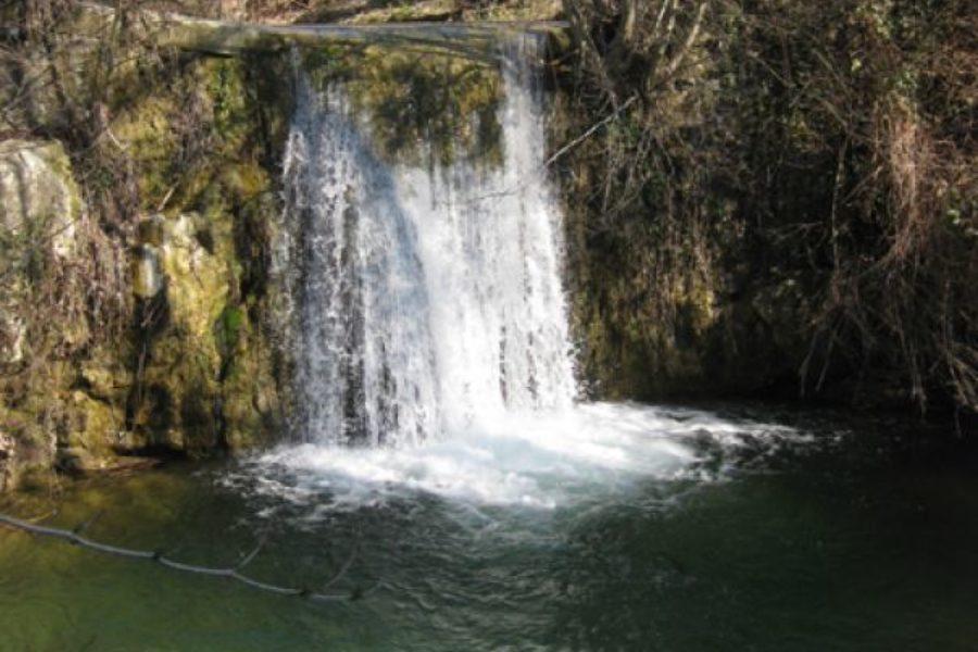 Area Naturale Protetta del Torrente Terzolle