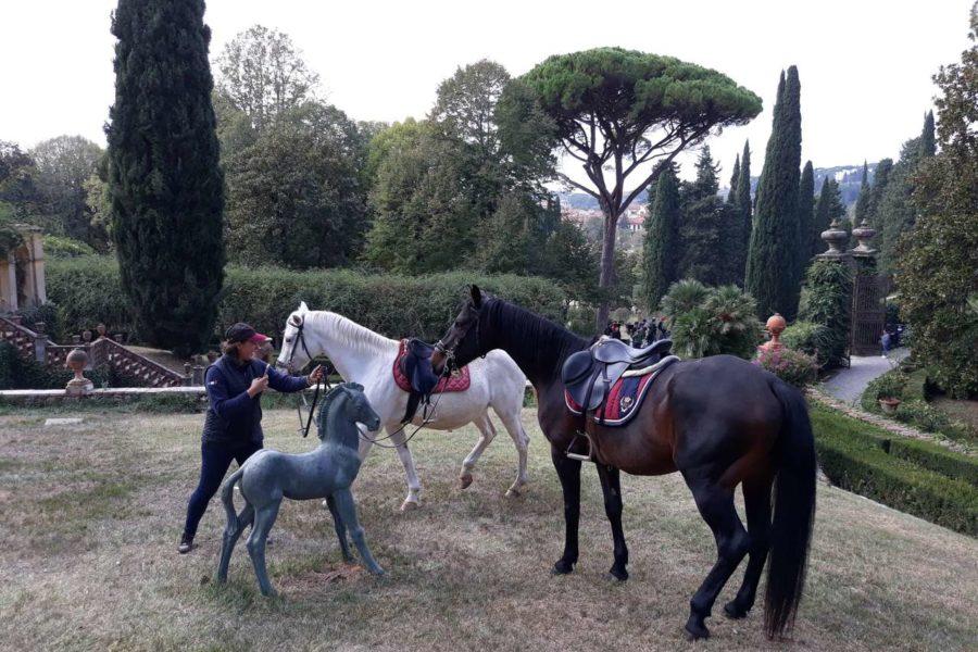 (Italiano) Un troupe cinese in Toscana per girare un film, con la partecipazione dei nostri cavalli!